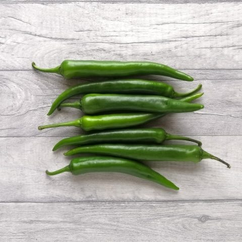 bunch of jalapeno green chillies on grey background