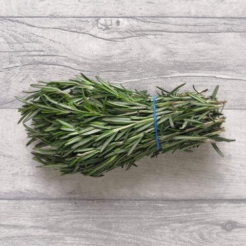 fresh rosemary herb with blue elastic on grey background