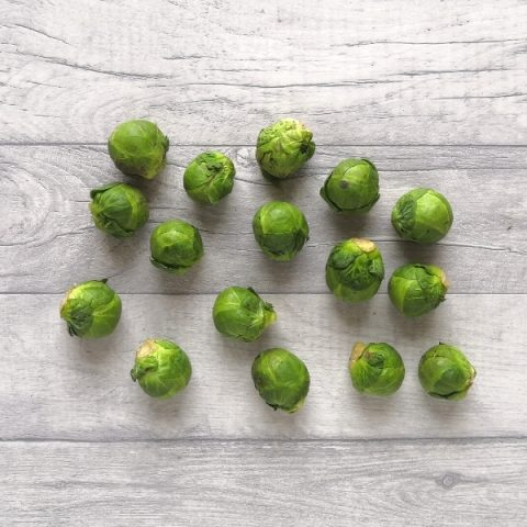 brussel sprouts on grey background