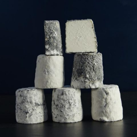 dorstone cheese with mould on a black background