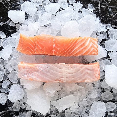 two salmon fillets on ice