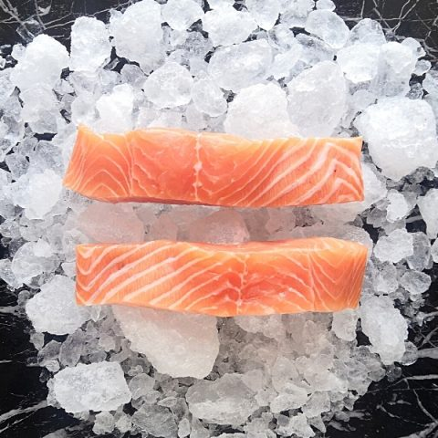 two salmon fillets on ice skin down