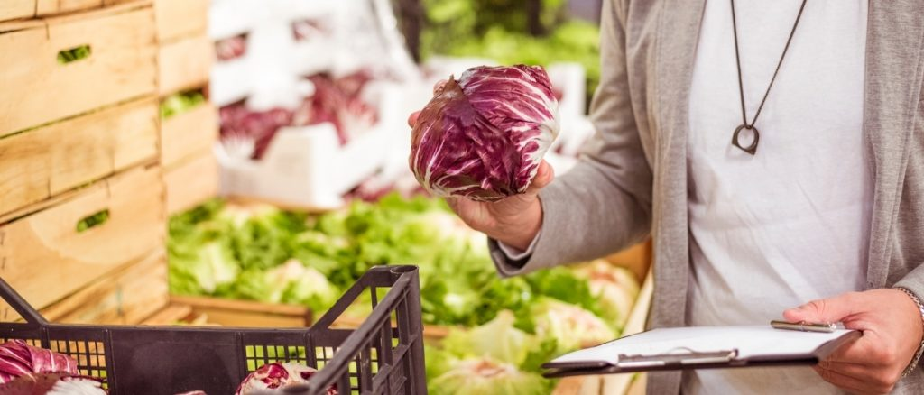 man with a clipboard holding and inspecting a fresh radicchio