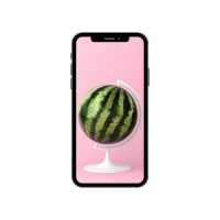 watermelon used as a map on a pink background
