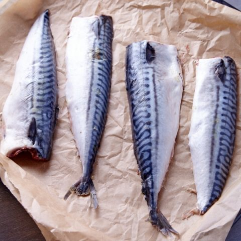 four mackerel fillets place wrapped in paper ready to be cooked